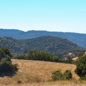 neighborhoods-portola-valley-1